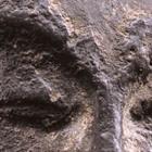 A SMALL DARK GRAY STONE RELIEF HEAD OF A BODHISATTVA